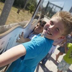 Dispositifs ludiques et interactifs dans les zoos